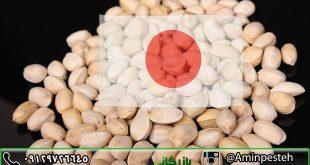 صادرات پسته به ژاپن