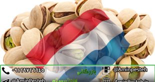صادرات پسته به هلند