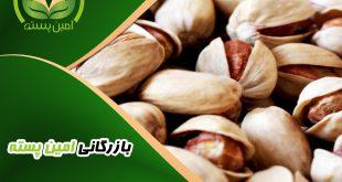 فروش عمده پسته در مشهد